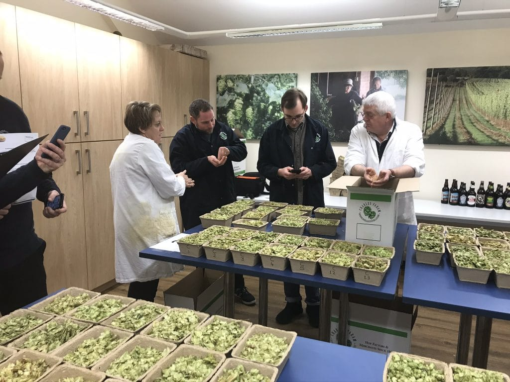 Photo of the judges sampling the hop samples from punnets