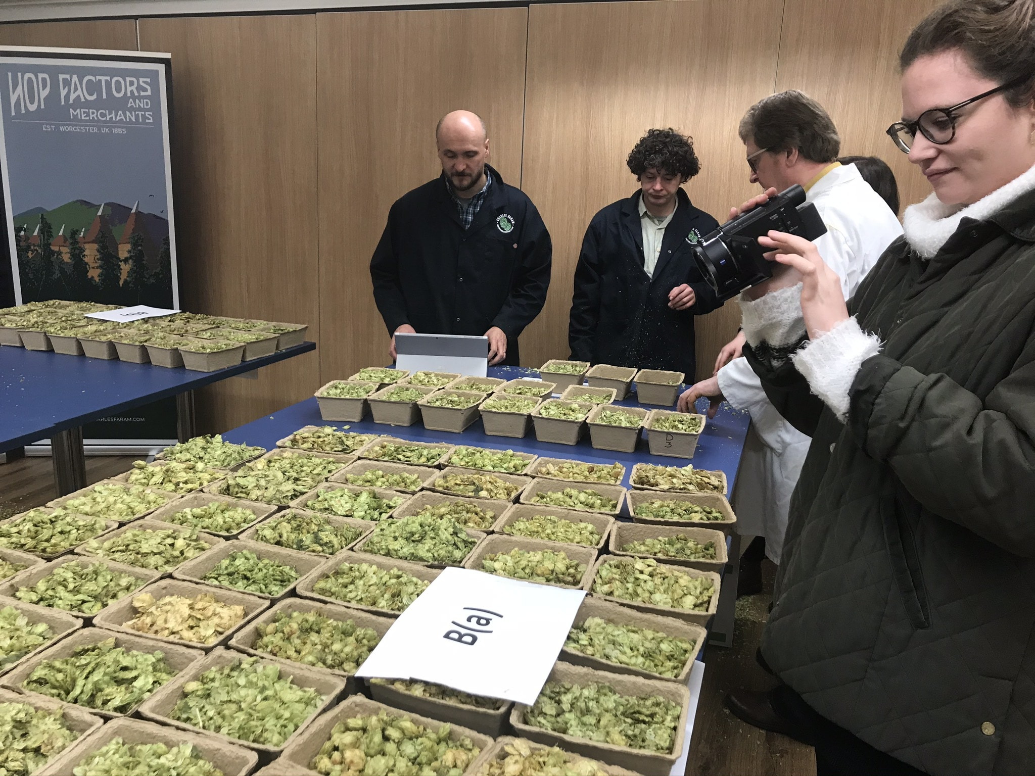 Photo of judges sampling the hops samples from small punnets for the British Hop Awards